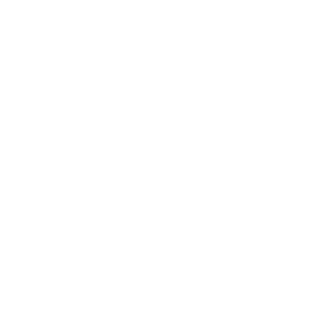 Les accordeurs - Piano de concert - Paris