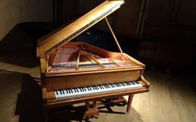 A VENDRE RARE PIANO 1/4 QUEUE PLEYEL